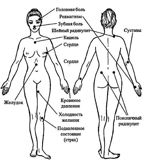 Сексульные точки возбуждающие на теле человека